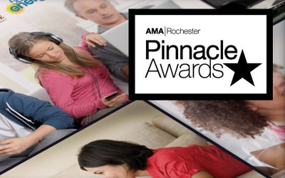 Collateral of the Year at 2013 AMA Pinnacle Awards