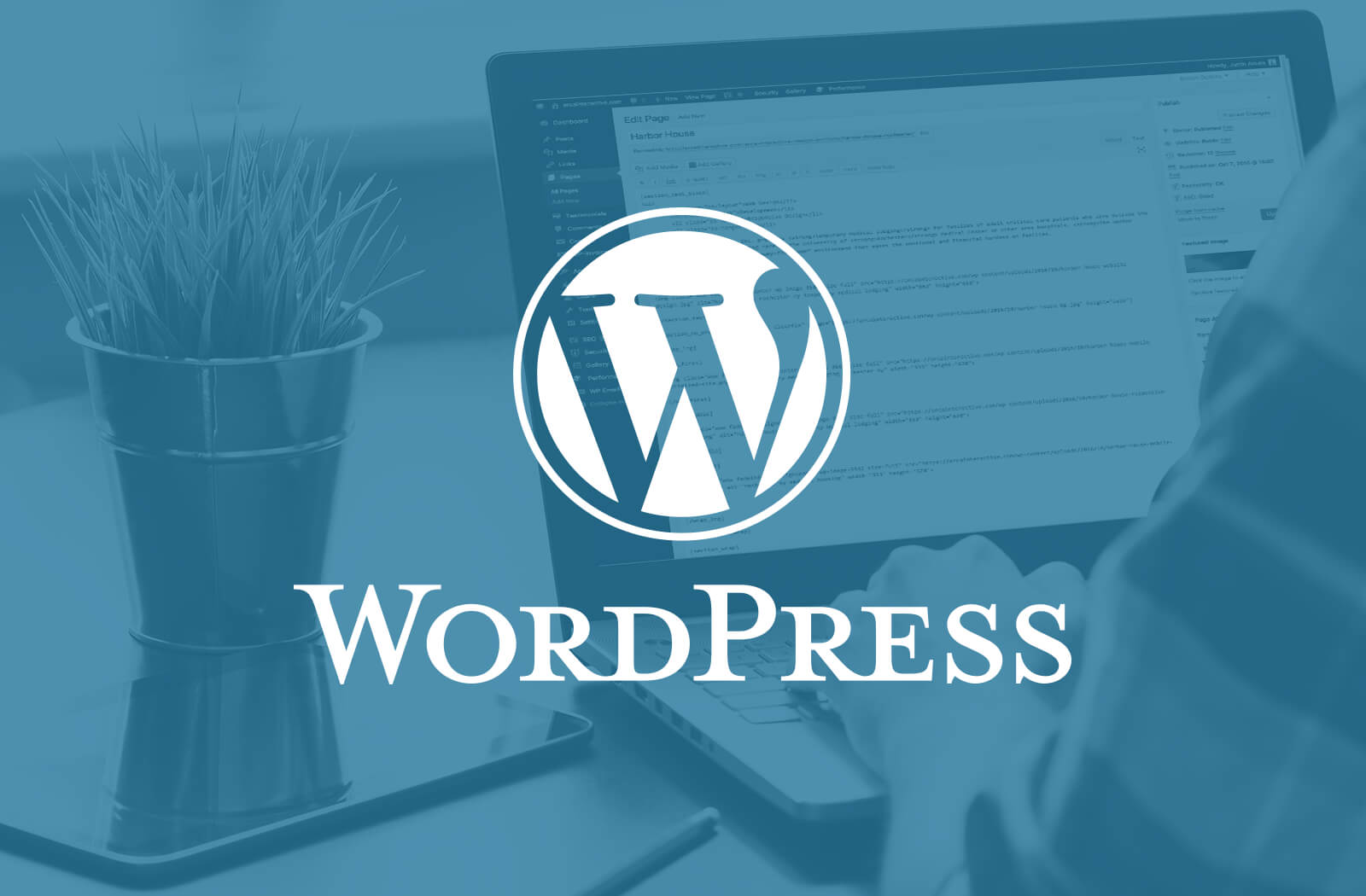 Why We Recommend WordPress to Our Clients